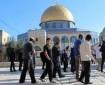 المجلس الوطني يدين قرار السماح لليهود بالصلاة في باحات الأقصى