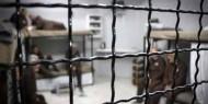 11 أسيرا يواصلون الإضراب عن الطعام مع دخول عيد الأضحى