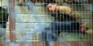 مركز: 235 طفلا في سجون الاحتلال الإسرائيلي