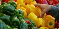 أسعار الخضروات والدواجن في أسواق غزة اليوم السبت