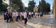 خاص بالفيديو والصور || تواصل الإدانات المحلية والعربية للاعتداءات الإسرائيلية على المسجد الأقصى