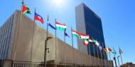 تأجيل قمة الأمم المتحدة للتنوع البيولوجي للمرة الثالثة