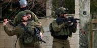 وحدة دوفدفان في جيش الاحتلال الإسرائيلي