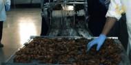خاص بالفيديو والصور|| العجوة.. مهنة موسمية تنعش بيوت الخريجات في خانيونس